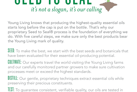 ylu-seed-to-seal-infographic - Sunshine Momma